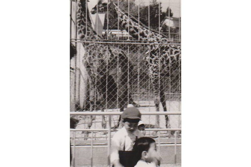 キリンと(昭和44年頃)