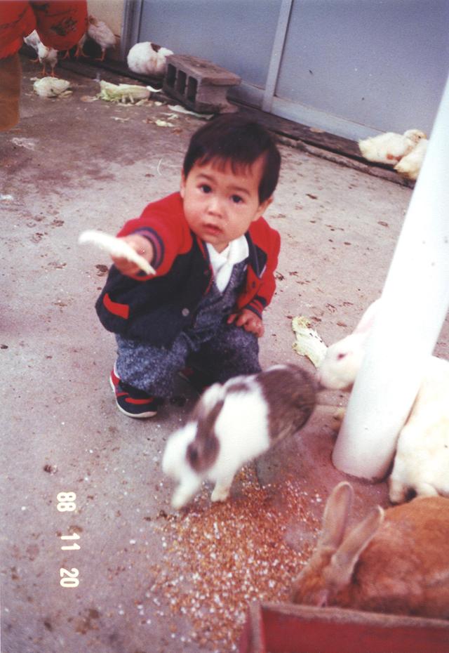 ウサギ(1988年11月)