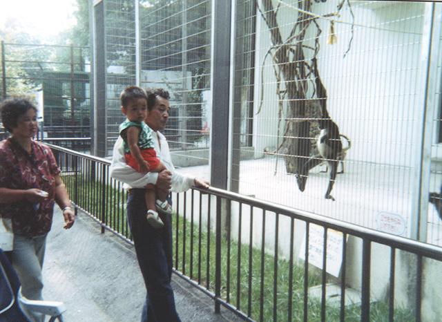 クモザル(1991年秋頃)