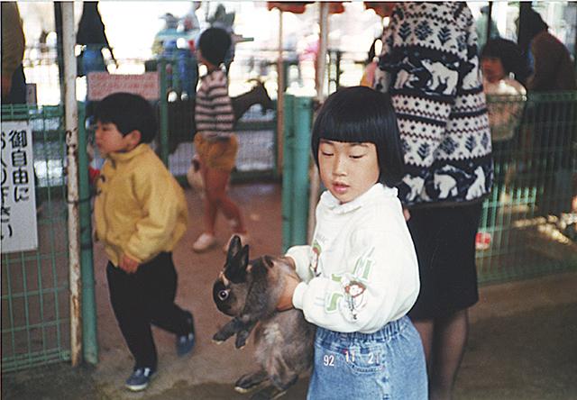 ウサギ(1992年11月)