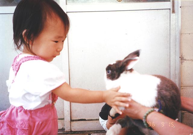 ウサギ(1996年)