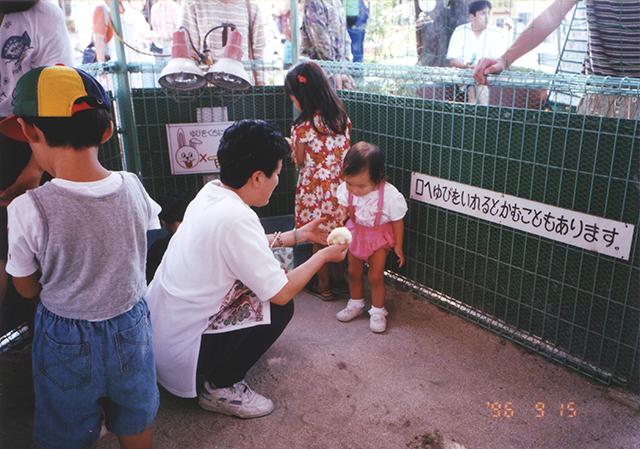ヒヨコ(1996年)